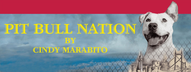 Pit Bull Nation by Cindy Marabito