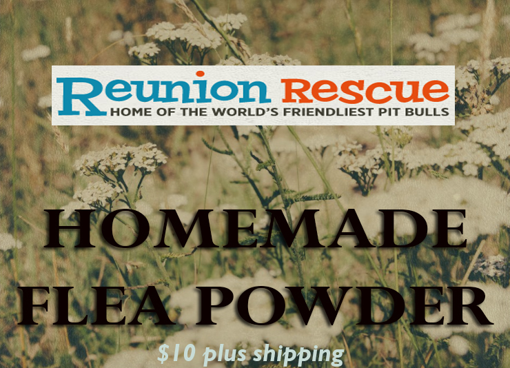 reunion flea powder $10